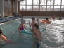 Plavání 2015